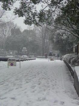 2014/02/08 11:51文京 雪
