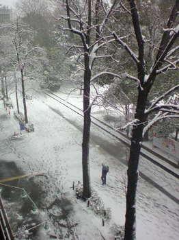 2014/02/08 12:26 文京 雪