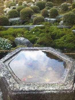 普門院前の庭 江戸中期の名園