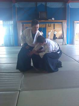 Hiriki no Yosei 臂力の養成