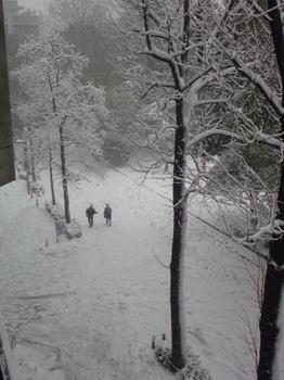 2014/02/08 15:53 文京 雪